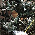 Windows-Live-Writer/Christmas-tree_1116B/DSCN3568