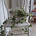 Chaise cannée ancienne patiné en blanc poudré