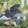 Couple de pigeons