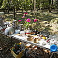 Journée d'initiation sur les teintures végétales, et encres et peintures végétales