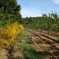 2009 05 17 Au dessus de Roumezoux en Ardèche