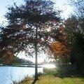 automne082