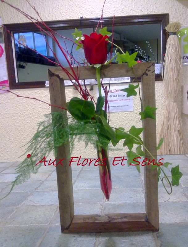 Cadre pipette rose rouge