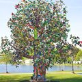 Interdependence: the tree project