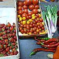 tomates, cives ou ciboule, piment doux des landes, fraises