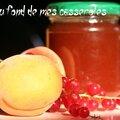 Confiture de groseilles et abricots