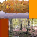 L'automne (baclée) par le loup