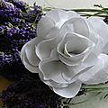 rose en drap ancien