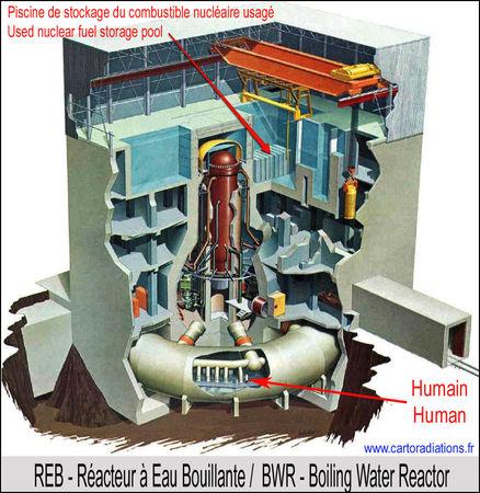 0008_Reacteur_REB_Reactor_BWR_Fukushima