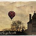 Au gré des vents, la montgolfière de blois.