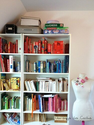 Bibliothèque livres classés par couleur Au pays des Cactus