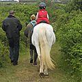 ronde n° 1 -le meunier , son fils ...et le cheval ..