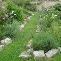 <b>Jardin</b> de roses en mai