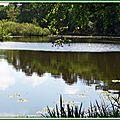 Lac Mimizan 05051531