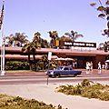 États-Unis : le zoo de <b>San</b> <b>Diego</b> célèbre son centenaire !