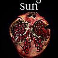 <b>Midnight</b> Sun de Stephenie Meyer sort le 5 août en France