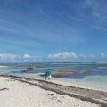 Location Grand Studio climatisé aux Antilles à Sainte-Anne en GUADELOUPE sur la Grande Terre