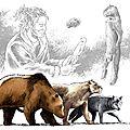 Carnivores préhistoire
