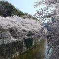 Edogawabashi_1-8