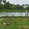 Lac de Tastoa 28061657