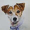 <b>Portrait</b> de chien à l'aquarelle !