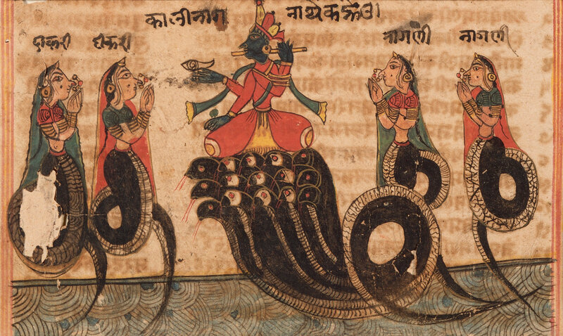 Krishna_Quelling_the_Serpent_King_Kaliya,_Folio_from_a_Bhagavata_Purana_(Ancient_Stories_of_the_Lord)_LACMA_M