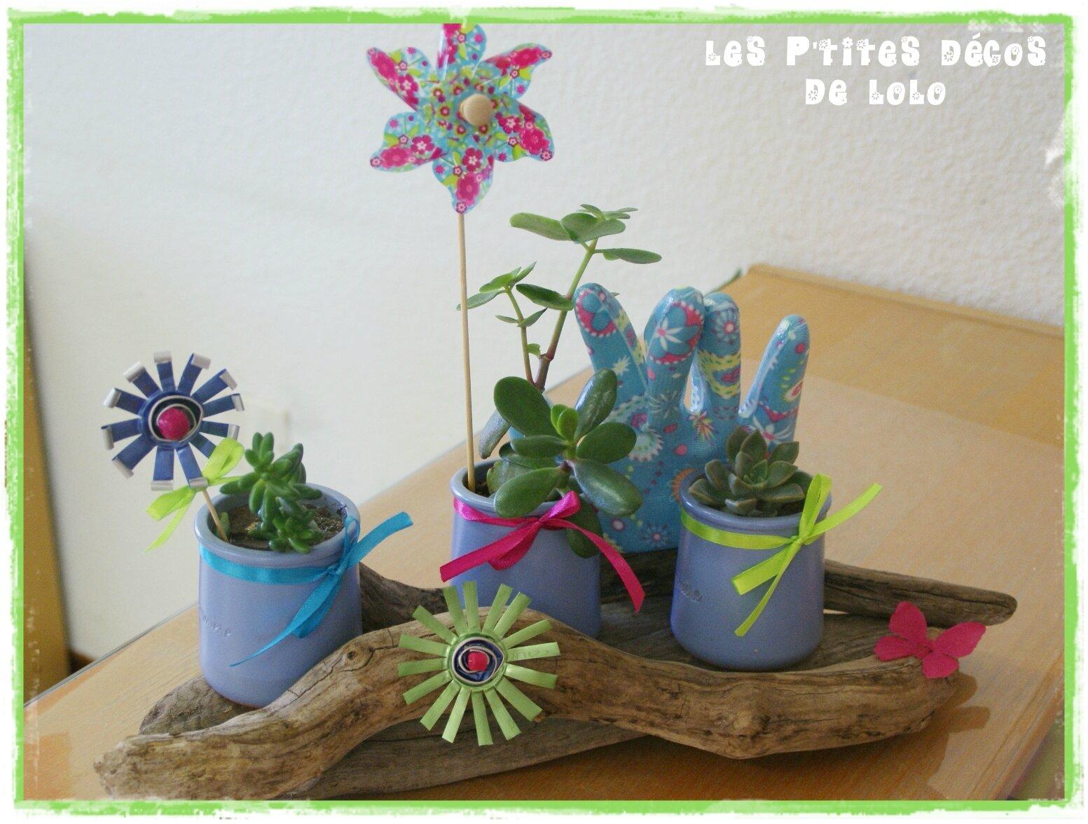 DIY DÉCO VÉGÉTALE : faire un mini jardin aux couleurs acidulées