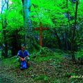 Rando pédestre permettant de découvrir le site de la sylve-benite,la croix du moine mort et n-d de milin (bas-dauphiné/isère)