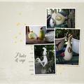 Mes poules_