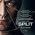 Split (Moi + toi + lui + elle + eux + tous ceux qui le veulent)