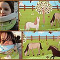 Montage Snood chevaux 2