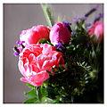 Un magnifique bouquet