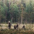 Câlin d'ours avec manuela, 26e inscrite