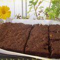 Le brownie de rémy...