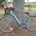 Byciclette