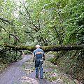 Conférence à castelsarrasin : gardes forestiers à montech