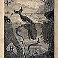 Vingt mille lieues sous les mers - <b>Jules</b> Verne