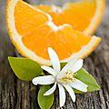 Les vertus <b>beauté</b> de la fleur d'oranger