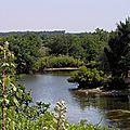 Parc ornithologique du teich, partie 2 : le delta de l'eyre