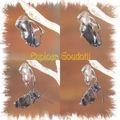 Euploea goudotii : la metamorphose