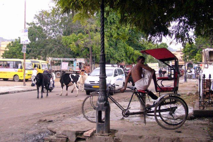jaipur old city342