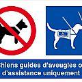 Bienvenue au chiens d'assistance, au chiens guide et à leurs maîtres