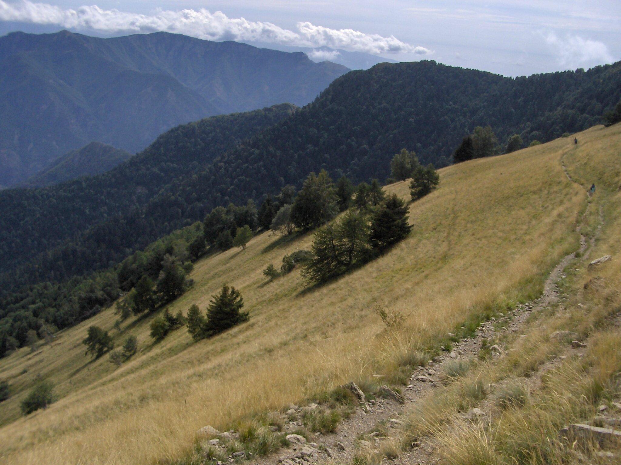 2015/14 Randonnée au massif de l'Authion
