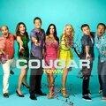 <b>Cougar</b> <b>Town</b>