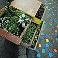 Meuble de fleurs (d'une rue déjà visitée)