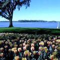 Lake Peign