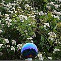 Windows-Live-Writer/Jardifoliz-2014_12D82/DSC_0391_thumb