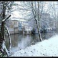 neige Jardin 2011 (1)