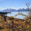 33 Lake Pukaki
