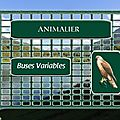 LPO => Buses Variables